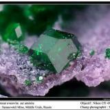Uvarovite garnet Saranovskii mine, Urals region, Russia fov 3 mm (Author: ploum)