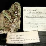 Vesuvianite, Diopside Toal del Mason, Monzoni Mts, Fassa Valley, Trento Province, Trentino-Alto Adige, Italy Old specimen of brown Vesuvianite on green Diopside matrix of 92.69x62.30 mm. Ex - Krantz Collection (Author: Matteo_Chinellato)