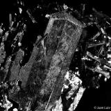 Aegirina.  Monte Malosa. Malawi.  7x5 cm. Cristal mayor 4 cm. (Autor: Juan Luis Castanedo)