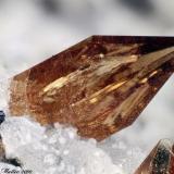 Titanite Montenero quarry, Onano, Viterbo Province, Latium, Italy 1.74 mm orange Titanite crystal (Author: Matteo_Chinellato)