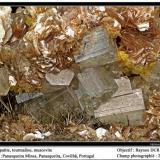 Apatite, muscovite, tourmaline, siderite Panasqueira Mines, Beira Baixa, Portugal fov 20 mm (Author: ploum)
