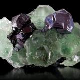 Fluorite, sphalerite, galena. Naica, Chihuahua, México. 7.4cm x 5.6cm x 5.2cm. (Author: Luis Domínguez)