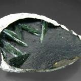 Vivianita en bivalvo fósil Península de Kerch, Crimea, Ucrania Encontrada en 1996 Tamaño de la pieza: 6.9 × 5.2 × 2 cm. El cristal más grande mide: 1.9 × 0.5 cm. Ex colección Silvane Foto: Minerales de Referencia (Autor: Jordi Fabre)