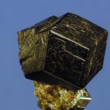 Hidrogrossularia negra (cristal aislado) Cantera Los Serranos. Albatera. Alicante. España 12x10x9 mm Recolectada en verano de 1996 (Autor: Daniel Agut)