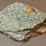Spessartine garnets in schist Truchas Peak, Rio Arriba County, New Mexico, USA 5.1 x 3.2 cm Even in New Mexico not many collectors know about this locality, but it has produced garnets up to 2 cm in diameter (Author: Philip Simmons)