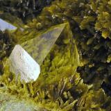 Cuarzo y Clinozoisita Cantera de Los Serranos. Albatera. Alicante. España. 25 x 25 mm (Encuadre aproximado de la foto) Detalle de uno de los cristales de la foto anterior. Recolectado en 1996 (Autor: Daniel Agut)