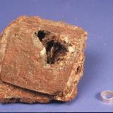 Hematite @ pyrite ( kyanite inside) Graves Mt., GA (1 cm ring) (Author: John Medici)
