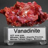 Vanadinite ACF mine area, Mibladen, Midelt, Khenifra Province, Meknes-Tafilalet Region, Morocco. 10 x 5 x 4 cm; 182 gram BIG VANADINITE WITH NEW LABEL MARK 1, CLEAR VERSION MARK 2 SOON! (Author: Louis Friend)
