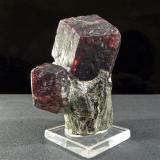 Almandino Ötz valley, North Tyrol, Tyrol, Austria Granate grande: 3,2 x 3,2 x 3,2 cm Total: 5,2 x 4 x 3,5 cm Lord Garnet viste chaqué de micaesquisto. (Autor: Josele)