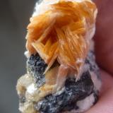 Cerusita y Barita ACF Mine Area, Mibladen, Midelt, Marruecos 6 cm x 5 cm x 2,5 cm Detalle muestra anterior. (Autor: Rafael varela olveira)