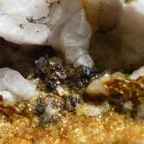 Casiterita en Cuarzo Minas de San Finx, Vilacoba, Lousame, A Coruña, Galicia, España Cristales de 4 - 5 mm Detalle muestra anterior. (Autor: Rafael varela olveira)