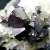 Galena, quartz Madan ore field, Rhodope Mts, Smolyan Oblast, Bulgaria Galena cubes ~ 1 cm (Author: Tobi)