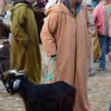 ¿O quizás una cabra?. G. Sobieszek photo. (Autor: Josele)