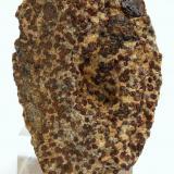 Almandino - Cap de Creus - Cadaqués - Alt Empordà - Girona - Catalunya - España -  10,2 x 6,4 x 3,5 cm (Autor: Martí Rafel)