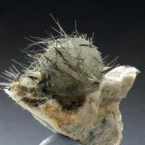 Calcite with hornblende Minera I Quarry. Lebrija. Sevilla. Andalusian. Spain Crystal 1 cm. This head needs a stylist (Author: nimfiara)