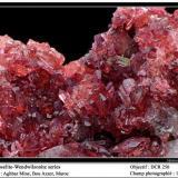 Wendwilsonite Aghbar Mine, Bou Azzer, Morocco fov 15 mm (Author: ploum)