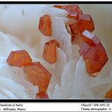 Vanadinite Mibladen, Midelt, Morocco fov 6 mm (Author: ploum)