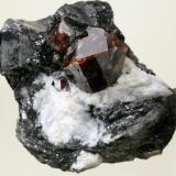 Zircón sobre Biotita y Nefelina Seiland, Alta, Noruega cristal de 5 cm (Autor: JRG)
