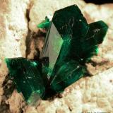 Dioptasa.  Tsumeb. Namibia.  4.6x4 cm. Cristal mayor 1.5 cm. (Autor: Juan Luis Castanedo)