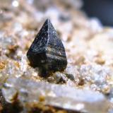 Anatasa, Cuarzo y Albita. Crapteig. Grisons. Suiza. Tamaño del cristal: 8 mm. (Autor: Jose Luis Otero)
