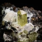 Apatito.  Mina Cerro del Mercado. Durango. Méjico.  9x6.8 cm. Cristal mayor 1.5 cm. (Autor: Juan Luis Castanedo)