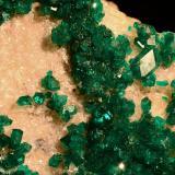 Dioptasa.  Altyn Tyube deposit. Kirghiz steppes. Karaghandy province. Kazakhstan.  9x5 cm. Cristal mayor 0.8 cm (Autor: Juan Luis Castanedo)