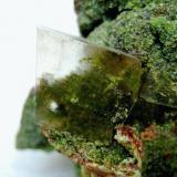 Calcite Tsumeb Mine (Tsumcorp Mine), Tsumeb, Otjikoto Region, Namibia Crystal size 1 cm Completely transparent calcite rhombohedron on green mottramite (?) (Author: Tobi)