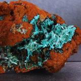 Aurichalcite Ojuela mine, mun de Mapimi, Durango, Mexico. FOV 40 x 40 mm approx (Author: nurbo)