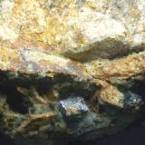 Pirita en matriz Pedrera Taberner - Tossa de mar - La Selva - Girona - Catalunya - España 75 x 40 x 40 mm Detalle (Autor: Joan Martinez Bruguera)