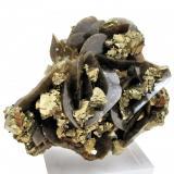 Calcopirita, siderita Mina Kaiwu, Hezhang, Bijie, Guizhou, China 95 mm x 78 mm (Autor: Carles Millan)