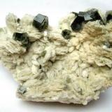 Fluorapatite on albite Sapo mine, Ferruginha, Conselheiro Pena, Doce valley, Minas Gerais, Brazil Specimen size 11 cm, largest apatite 1,5 cm (Author: Tobi)