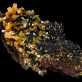 Wulfenite Level 6, Ojuela Mine, Mapimí, Mun. de Mapimí, Durango, Mexico 8x5 cm. Fot. & Col. Juan Hernandez. Adquired in July of 2009. (Author: supertxango)