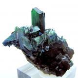 Vivianite, siderite Colavi Mine, Machacamarca, Cornelio Saavedra, Potosí, Bolivia 78 mm x 65 mm (Author: Carles Millan)