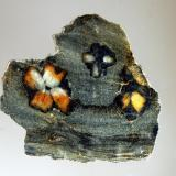 Andalusite var. chiastolite Lancaster, Worcester County, Massachusetts (Author: crosstimber)