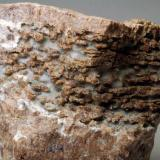 Granate Palamós - Baix Empordà - Girona - Catalunya - España 65 x 55  x 45 mm (Autor: Joan Martinez Bruguera)