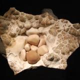 "Aragonite var. ""cave pearls"" Rohrig Shaft, Wettelrode, Sangerhausen, Saxony-Anhalt, Germany 8.0 x 10.0 cm (Author: crosstimber)"