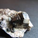 Casiterita Krupka, Bohemia, República Checa 1 cm2 (planta del agregado cristalino); 4 x 5 mm. (cara romboidal brillante) Varios cristales implantados en matriz de greisen. (Autor: prcantos)