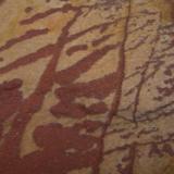 Hematites Sierra de la Mosca - Cáceres capital - Cáceres- Extremadura - España 14 x 15 cm. Hematites en dendritas. Curiosas formas las que tienen a veces los óxidos. (Autor: Antonio GG)