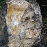 Aragonito Barranco de las Angustias, La Palma, Canarias, España. 40 cm (Autor: canada)