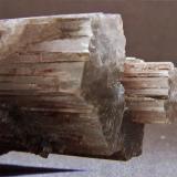 Aragonite. Enguidanos, Cuenca, Castilla-La-Mancha, Spain. FOV 25 x 25 mm approx (Author: nurbo)