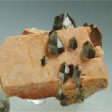 Microcline with Quartz (variety smoky quartz)<br />Mas Sever Quarry, Massabè (Mas Ceber), Sils, Comarca La Selva, Girona/Gerona, Catalonia, Spain<br />5 cm width.<br /> (Author: Joan R.)