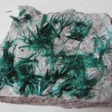 brochantite plate...plain (Author: Peter Megaw)