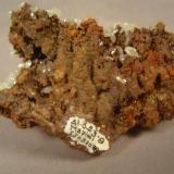 """""""Mixonite"""", Mina Ojuela, Mapimi, Durango, Mexico.  Backside of specimen in previous photograph.  This was acquired in 1978, as can be seen from the affixed label.  I see that I acquired the piece on my birthday that year. (Author: Ed Huskinson)"""
