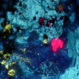 Phlogopite, Corundum, Diopside Amity NY 18 CM (Author: Glenn Rhein)