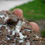 Chondrodite Amity New York 1.5 cm crystal (Author: Glenn Rhein)