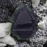 Fluorite San Martin Mine, Municipio Sombrerete, Zacatecas, Mexico crystal is 3 cm across Color zoned octahedral fluorite. Peter Megaw specimen (ex. Jesus Salinas); Jeff Scovil photograph (Author: Peter Megaw)