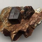 Almandine Buvika, Nordland, Scandinavia Big crystal: 37mm (Author: Maxilos)