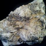 Barita, galena, fluorita y piromorfita Mina Atrevida - Vimbodí i Poblet - Conca de Barberà - Tarragona - Catalunya - España 13 x 13 x 4 cm (Autor: DavidSG)