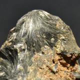 Ferro-hornblenda Mina El Carrazal, Cardes, Piloña, Asturias cristalización 2,5 x 2 cm. detalle de la pieza anterior (Autor: Quexigal)