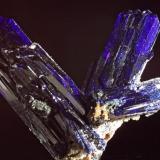 Azurite Tsumeb, Namibia 2.5 cm largest  crystal (Author: Herman van Dennebroek)